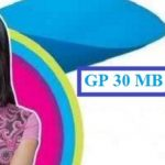 GP 30 MB Internet 12 TK Offer