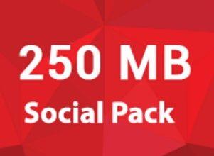 Robi Social Pack 250 MB 10 TK (28 Days Validity)