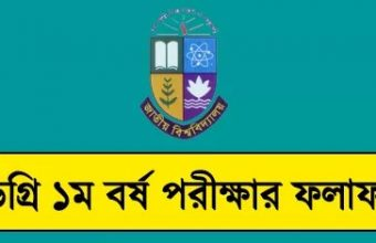 NU Degree 1st Year Exam Result 2017 – www.nu.edu.bd