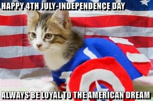 4th of July - USA Independence Day Slogans, Short Taglines, One Line Captions for Instagram, Facebook, Twitter & WhatsApp Status