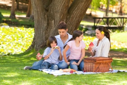 International Picnic Day Celebrations Image, Picture & wallpaper