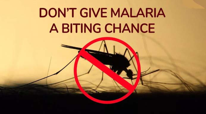 Best World Mosquito Day Picture, Slogans, Images, Wishes, Photos, Messages, Pic, Quotes, SMS, Wallpaper Greetings & Text SMS