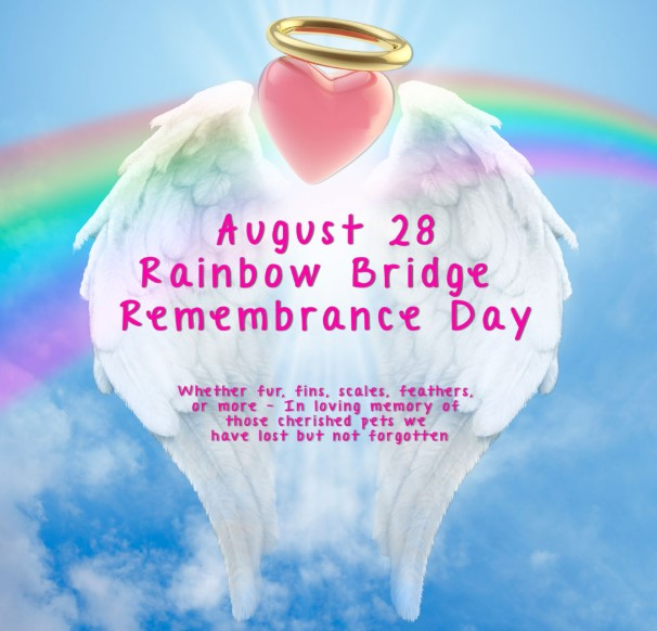 Happy Rainbow Bridge Remembrance Day 2019 Wishes, Messages, Quotes, Greetings, Text SMS