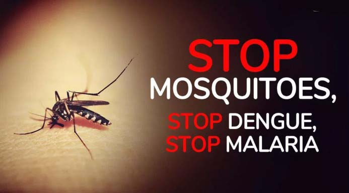 World Mosquito Day 2019 Picture, Slogans, Images, Wishes, Photos, Messages, Pic, Quotes, SMS, Wallpaper Greetings & Text SMS