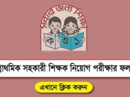 Primary Result - Primary School Teacher Job Result - Primary Result 2019 PDF Download