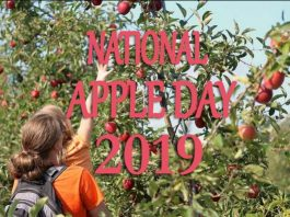National Apple Day 2019