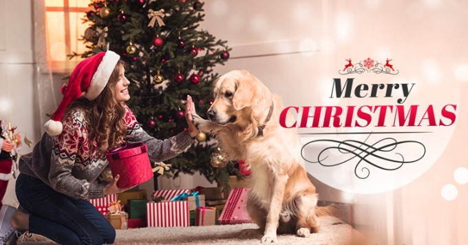 Christmas Day 2019 Pic, Image, Photo, Picture, Wallpaper