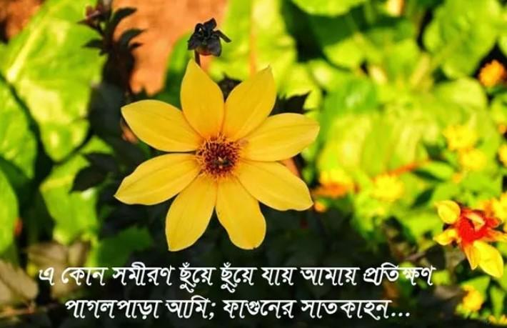 Pohela Falgun SMS Pic