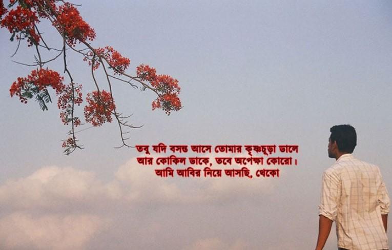 Pohela Falgun Wallpaper